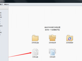 Beyond Compare 4.3.7 中文破解版 (Windows)