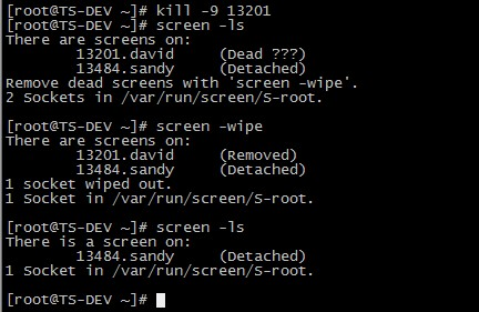 linux screen 命令详解——screen 的安装、使用